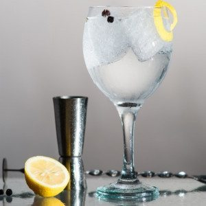 Taller de Gin Tonic- Madrid