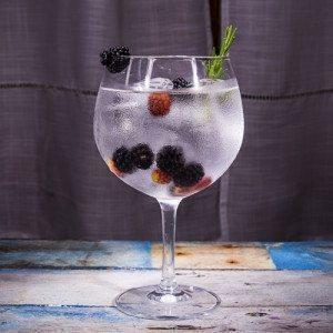 Taller de Gin Tonic - Sevilla