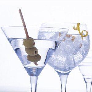 Taller y cata de vodka-tonic Premuim - Palma de Mallorca