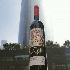 Cata de vinos y aceites con Botella para 2 - Lleida