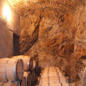 Visita enológica y botella de vino para 2 - Castellón