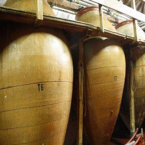 Visita a bodegas y degustación de vinos - Madrid