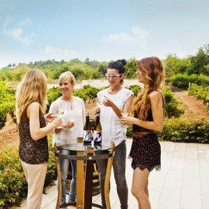Visita guiada a bodega y cata de vinos y agridulces -Tarragona